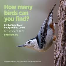 The Great Backyard Bird Count 2020 | EarthCapades
