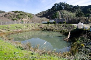 Water Education Gets a Theatrical Spin: Half Moon Bay Review 04-21-11